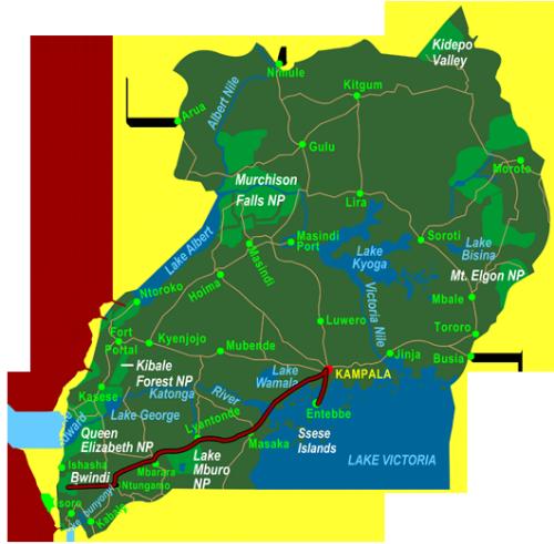 Map Gorilla Tracking in Bwindi (4 days)