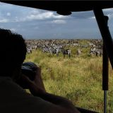 Kenya Maasai Mara - Fly In (5 days)