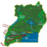 Bwindi & Queen Elizabeth National Park - Fly In (6 days)